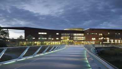Photo of University of Limerick (UL)